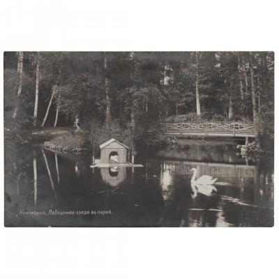 """Фотография """"Кеммерн. Лебединое озеро в парке"""""""