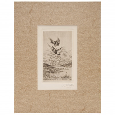 """Etching """"Eagle-owl hunting duck"""""""