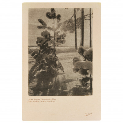 "Postcard ""Under the cold sun rays"""