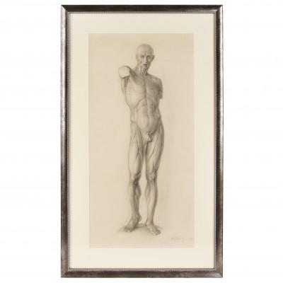 "Academic drawing ""Study of human anatomy"""