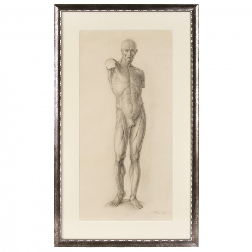"Academic drawing ""Study of human anatomy"""