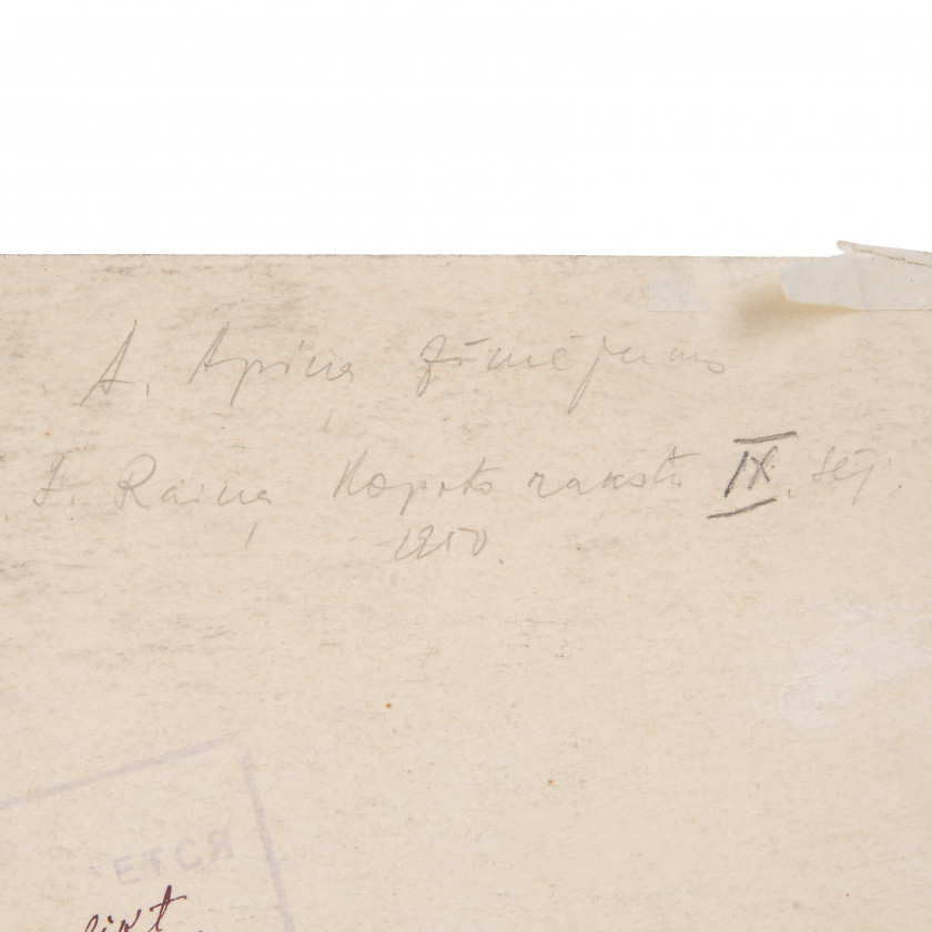 "Drawing ""J. Raiņa kopoti raksti IX sējums, Imants"""