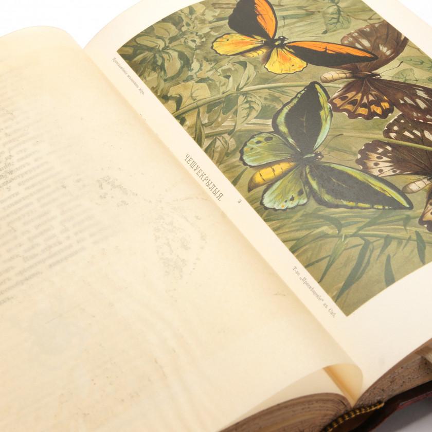 """Book """"Происхождение животного мира"""""""